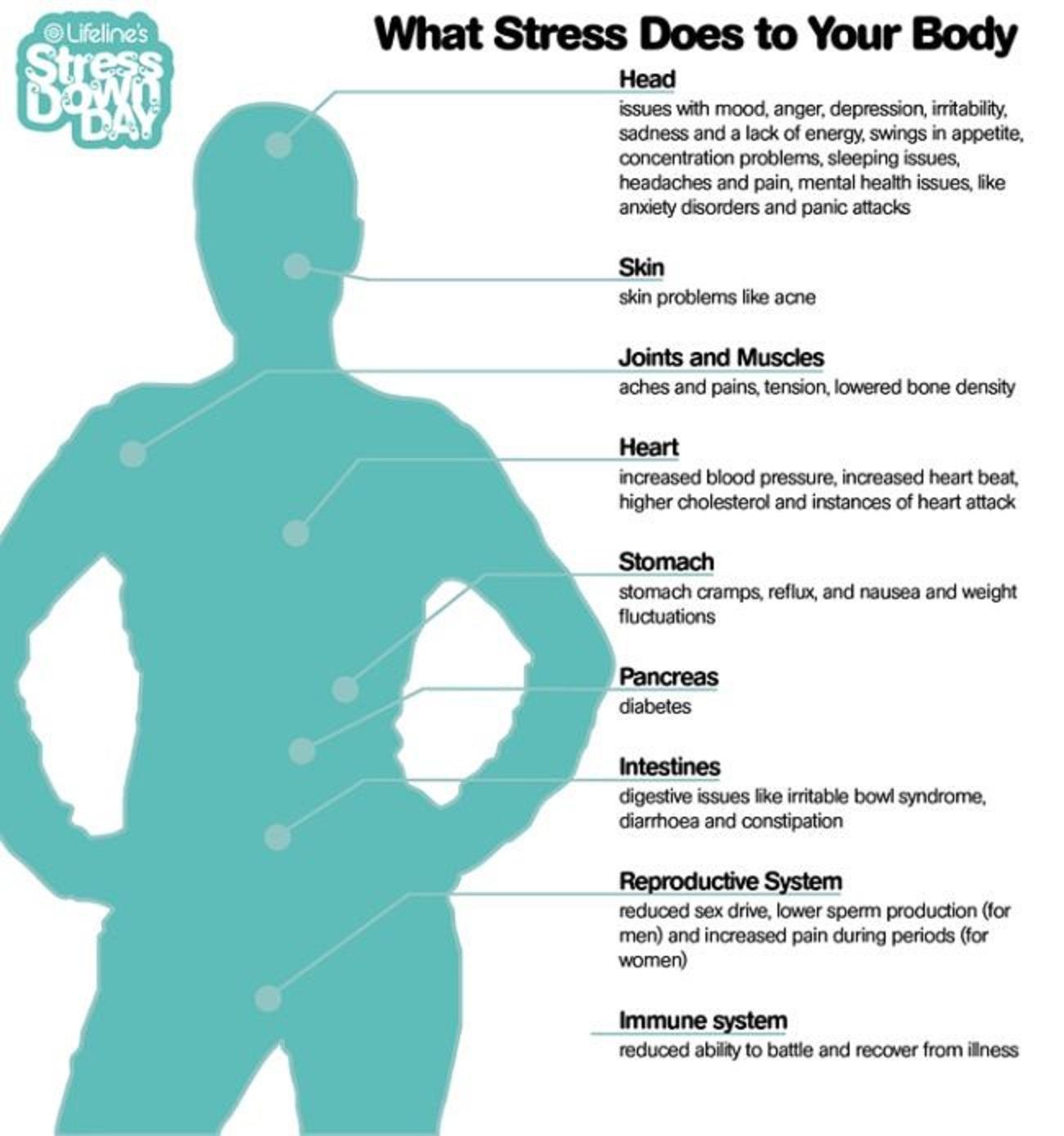 Belviq FAQs « Belviq Weight Loss